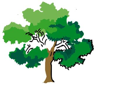 Essay on how are trees useful to us